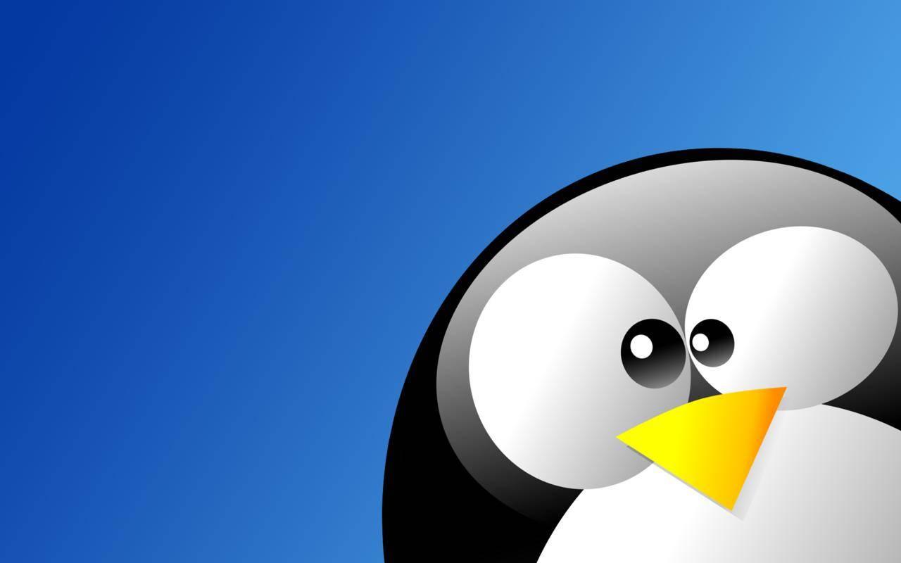 Linux - Hacking and Linux Go Together Like 2 Keys